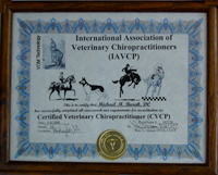 Certified Veterinary Chiropractor